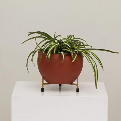 BKR® Apple Metal Pot Texture (White,Brown,Green)