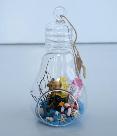 Glass Hanging Terrarium Bulb Design
