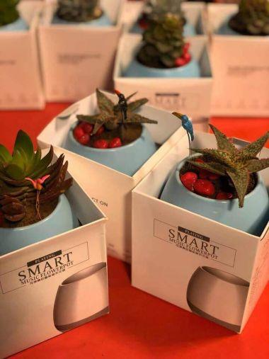 Music flower pot, wireless BlueTooth speaker