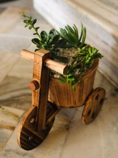 BKR® Wooden Pot Tricycle Design With Planted Succulent And Designed With White Stone LG0715